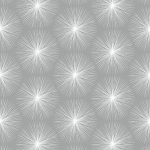 10591 Fire Circle Grey