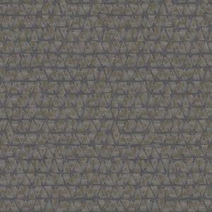 24621 Geometrico Phoenix