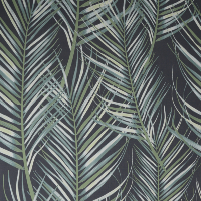 100558 Palm Leaves – 13000 Ft
